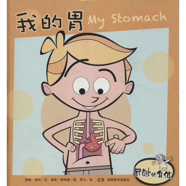 胃在身体的哪个部位图解
