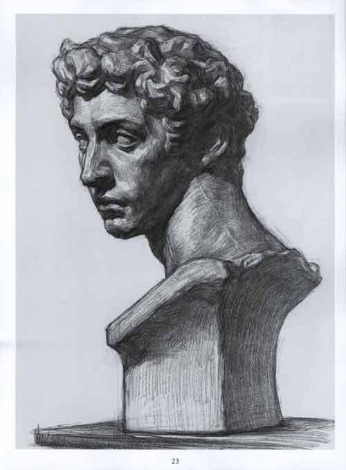 五官的画法 鼻子正面 五官的画法 耳朵侧面 头骨的画法 头骨侧面 石膏