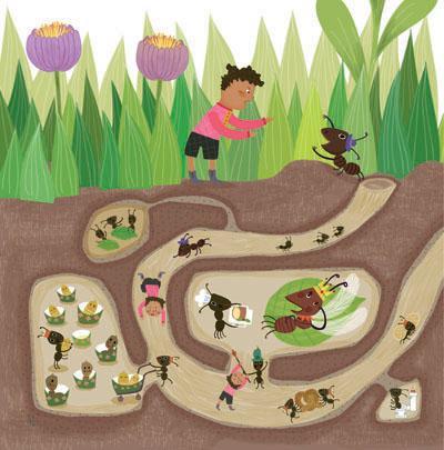 形式多样:故事美绘本+折纸方法+昆虫的彩纸.