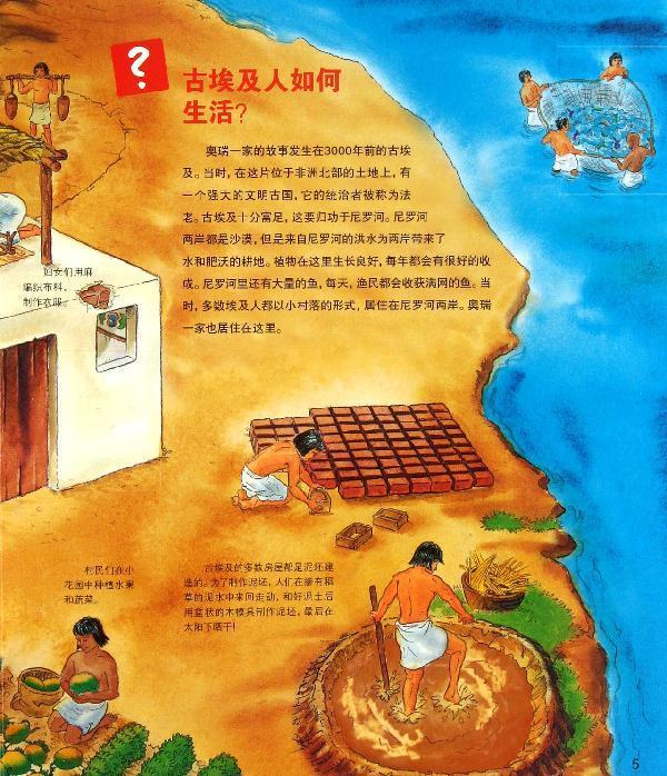 谁建造了金字塔?古埃及人如何在城市中生活?学生们在学校里学习什么?