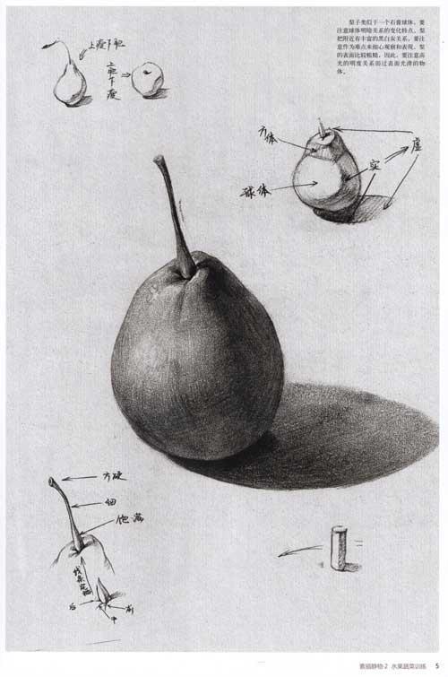 素描静物 2 水果蔬菜训练