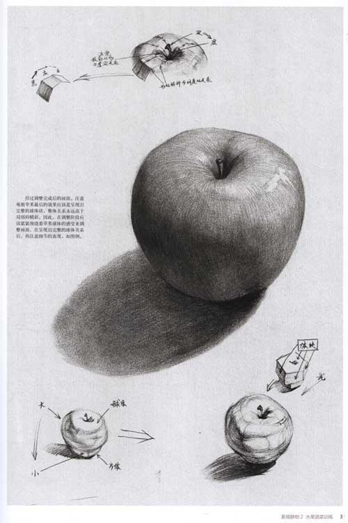 素描静物 2 水果蔬菜训练-李青-技法教程-文轩网-素描静物组合 厨房用图片