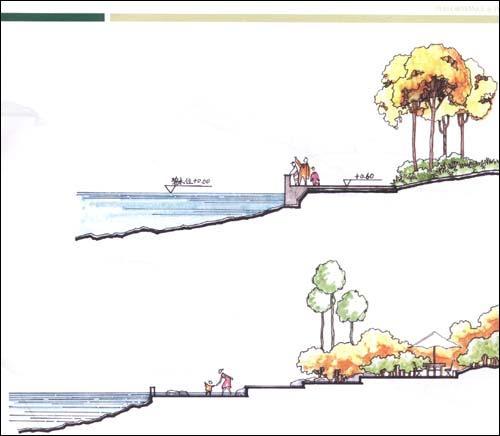 种植手绘立面图