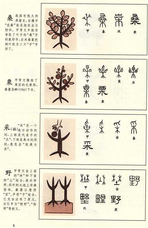 张乐名字设计绘画