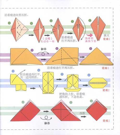 第一次学折纸.海底世界