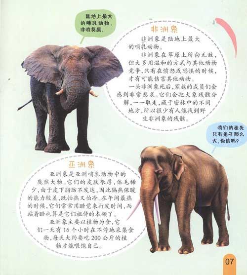濒危·灭绝动物的秘密--少儿-文轩网